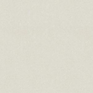 47980DC-Arktis---Cijela-plocaweb